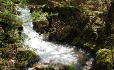 PR13 - Trilho da Caniçada, Curso de Água