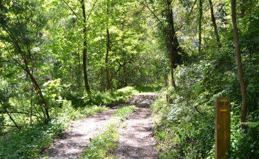 PR13 - Trilho da Caniçada, Percurso placa