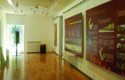 Sala de Exposições - Centro de Educação Ambiental do Vidoeiro - Gerês