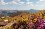 Serra Amarela, Terras de Bouro
