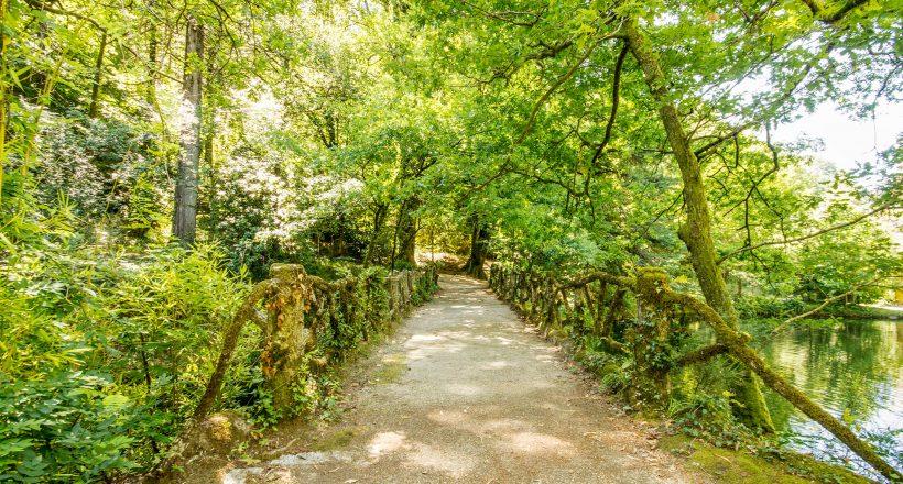 Parque Tude de Sousa (Termas do Gerês)