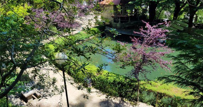 Parque S.Bento, lago